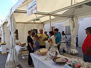 mostra mercato_15